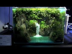 The Art of the Planted Aquarium 2017 aquascaping contest was held during Tierwelt Messe in Magdeburg, Germany, on April In this video I present . Planted Aquarium, Aquarium Sand, Betta Aquarium, Betta Fish Tank, Aquascaping, Fish Tank Themes, Nano Cube, Amazing Aquariums, Waterfalls