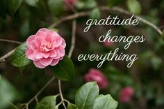 Be intentional. Being grateful for all things must be learned.