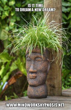 Succulent Pots, Planter Pots, Succulents, Flower Pots, Flowers, Yard Art, Life Is Good, Garden Sculpture, Mandala
