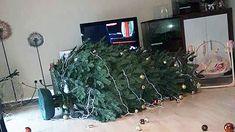 Weihnachtsbaum schmücken: Kann Ihr Baum hier mithalten?