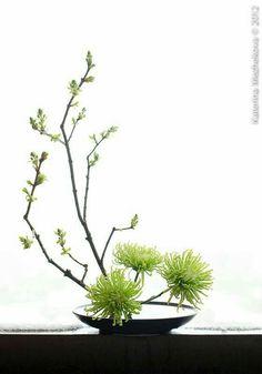 Fresh leaves give us hope - Ikebana - Arranjos Contemporary Flower Arrangements, White Flower Arrangements, Flower Arrangement Designs, Ikebana Flower Arrangement, Ikebana Arrangements, Creative Flower Arrangements, Deco Floral, Arte Floral, Art Floral Japonais