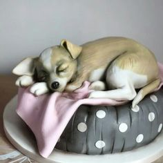 Sculpted chihuahua 3D cake