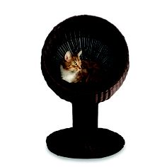 Let your cat lounge in style nestled inside this Kitty Ball Bed. #pet