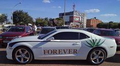 Forever Camaro