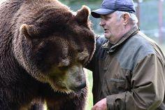 Kuusamon suurpetokeskuksen johtaja Sulo Karjalainen, 75, on karhuilleen isähahmo ja ystävä, joka käy karhun kyljessä nukkumassa ja välillä saunookin niiden kanssa.