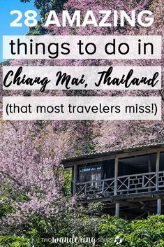 28 Amazing Things to do in Chiang Mai Thailand. The ultimate travel guide including where to stay and what to eat! : 28 Amazing Things to do in Chiang Mai Thailand. The ultimate travel guide including where to stay and what to eat! Thailand Adventure, Thailand Travel Guide, Visit Thailand, Asia Travel, Thailand Tourism, Thailand Vacation, Backpacking Thailand, Laos Travel, Thailand Honeymoon