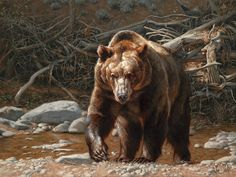 Greg Beecham :: Force of Nature at Astoria Fine Art Gallery in Jackson Hole Bear Paintings, Wildlife Paintings, Wildlife Art, Wind Wolves, West Art, Animal Totems, Autumn Art, Animal Drawings, Horse Drawings