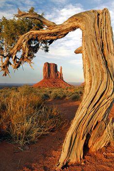 ✯ Framed Mitten - Monument Valley National Park - AZ
