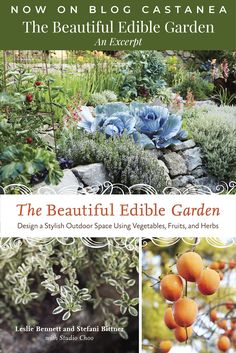 The Beautiful Edible Garden: An Excerpt // Chestnut School of Herbal Medicine  #ediblegardens #herbgardening #herbalife #herbalist #gardening