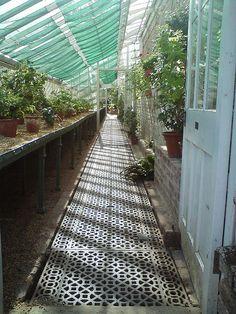 Greenhouse: Stourhead