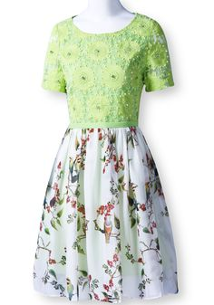 Green Contrast Lace Short Sleeve Floral Chiffon Dress