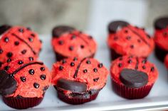 Lady bug party ideas