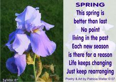 Spring by Patricia Walter - This spring is better than the last. No point living in the past. Each new season is there for a reason. Life keeps changing. Just keep rearranging.