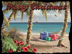 Google Image Result for http://crunchybeachmama.com/wp-content/uploads/2011/12/Christmas-beach-lights-graphic.gif