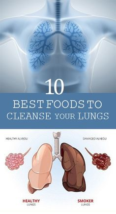 10 Best Foods to Cleanse your Lungs - kellyakers. - 10 Best Foods to Cleanse your Lungs – kellyakers.topwom… – – 10 Best Foods to Cleanse your Lungs – kellyakers. Natural Asthma Remedies, Herbal Remedies, Health And Nutrition, Health And Wellness, Health Care, Clean Lungs, Alcohol Detox, Reduce Belly Fat, Natural Medicine