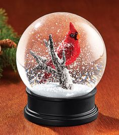 Gift from Beth's parents on her 16th birthday - a cardinal snow globe