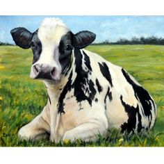 Holstein Cow Farm Animal Art Print of Original Painting by Dottie Dracos, dairy cow, black and white cow, farm art, cow art