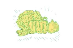Brocolli Capsicum Onion Drawing - Illustrations. Drawing sketch style illustration of broccoli, capsicum, onion, carrots set on isolated white background. #illustration  #BrocolliCapsicumOnion