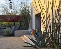 desert courtyard house | Steve Martino