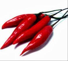 Alimento com caloria negativa - Pimenta: tem propriedades analgésicas, anti-inflamatórias, diminui risco de doenças cardiovasculares, reduz o colesterol e pode ajudar no tratamento da enxaqueca. É antioxidante e rica em vitamina C.