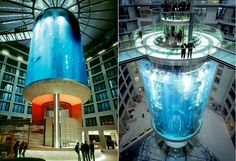 aquariums and marine research centers contemporary architectures