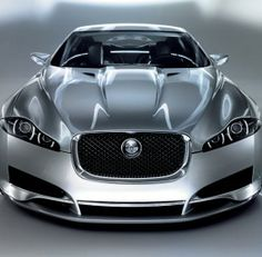 Jaguar --- Happy Father's Day All. !!!