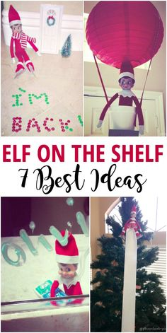 7 Best Elf on the Sh
