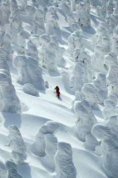 Muhteşem güzelliği kış