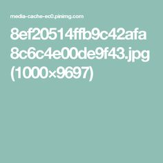 8ef20514ffb9c42afa8c6c4e00de9f43.jpg (1000×9697)