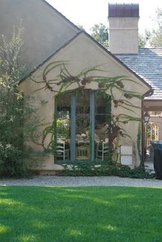 Here is your chance to grow those vines you have always dreamed about. Be sure to maintain them, as some varieties can grow very fast and become invasive on downspouts and gutters.