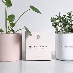 Pastel packaging, essential oils