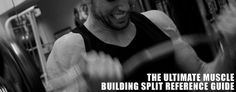 The Ultimate Muscle Building Split Reference Guide