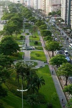 Estes são os maiores jardins de orla de praia , do mundo!! Segundo o Guiness book!! Santos/SP é demais!!!