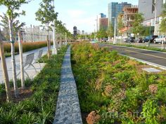 PHOTOS: Hunter's Point South Waterfront Park and Urban Beach O...