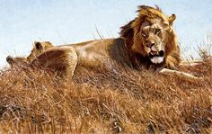 """Long Live The King"" by John Banovich, 38x60 Oil on Belgian Linen"