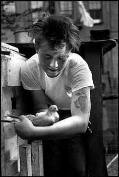 Bruce Davidson. Brooklyn Gang, NY 1959 ©B.D/Magnum photos