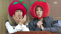 Modern Farmer: Episode 13 » Dramabeans » Deconstructing korean dramas and kpop culture