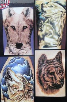 tattoo Tattoo Drawings, Tattoos, Old Magazines, Animals, Tatuajes, Animaux, Tattoo, Japanese Tattoos, Animal