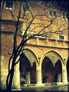 Kraków, Poland.   #visit #travel #autumn #ciyofkings
