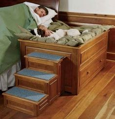 dog+bunk+beds+with+stairs | Elevated Dog Bed With Stairs... Tim would totally do this with penny ...