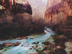 Somewhere near Havasu Falls in the Grand Canyon.