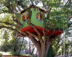 Wonderful Tree House Design