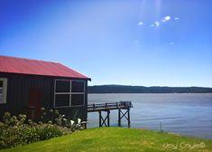 Port Waikatō