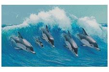 Leaping Dolphins - Cross Stitch Chart