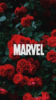 Marvel lockscreens - Best of Wallpapers for Andriod and ios Rose Wallpaper, Cute Wallpaper Backgrounds, Wallpaper Iphone Cute, Funny Wallpapers, Aesthetic Iphone Wallpaper, Galaxy Wallpaper, Wallpaper Quotes, Quote Backgrounds, Wallpaper Wallpapers
