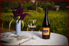 To go with your next meal, a bottle of Willow Creek Pinot Noir! via www.cpwcreative.com #wine #capemay