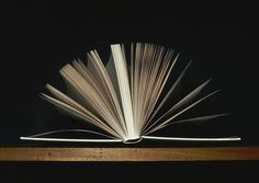 I love to read everything, no matter the shape or form.  I even try to read minds.