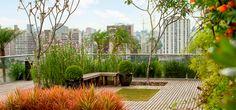 00-um-jardim-exuberante-no-topo-de-um-prédio Um pouco de verde numa selva de pedras é possível!