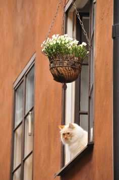 Taken in Stockholm