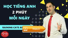 Hc ting Anh pht mi ngy RAINING CATS AND DOGS  Hc ting Anh pht mi ngy Raining cats and dogs H THNG  on Pet Lovers